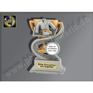 FG910 Judo-Dress-Resin-Pokal, Antik-Silber/Gold, 12x8 cm