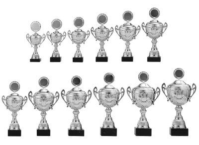 Hier können Sie Ihre  Pokalserie...