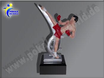 Kickboxer, Kickboxen, Taekwondo-Resin-Pokal, Multicolor...